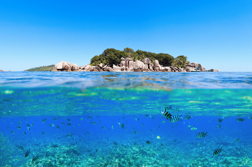 Snorkelling in the Seychelles, Unforgettable Cruises