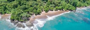 Corcovado National Park, Unforgettable Cruises