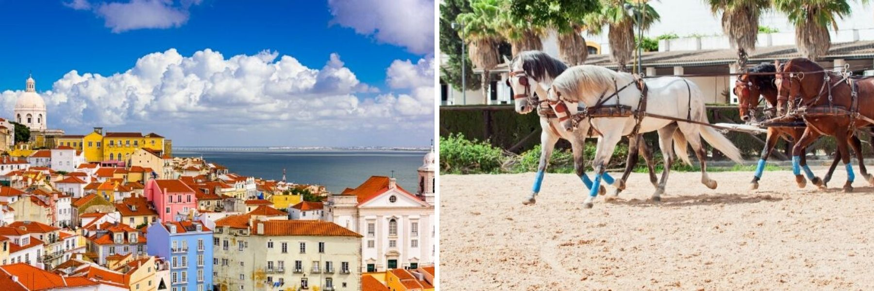 Alfama and carriage ride